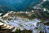foto of ifugao  - Village houses near rice terraces fields - JPG