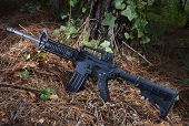 stock photo of ivy  - Assault rifle on pine needles with ivy and trees around - JPG