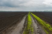 image of rainy season  - Ukrainian agricultural landscape at spring season with dirty road as boundary between fields - JPG