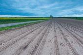 stock photo of plow  - Plowed field landscape in calm polish countryside - JPG