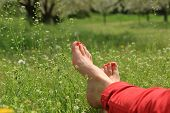 pic of barefoot  - Barefoot female feet on green field with flowers - JPG