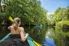 picture of kayak  - Woman kayaker paddling down a beautiful jungle river with two people in a canoe on a gorgeous day - JPG