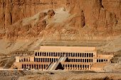 stock photo of skarabaeus  - ancient temple of hatschepsut at theben west - JPG