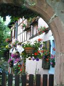 Quiet French Courtyard