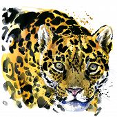 Постер, плакат: watercolor leopard leopard T shirt graphics leopard illustration unusual illustration puppy leo