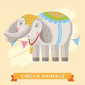 Постер, плакат: Circus Elephant vector animal series