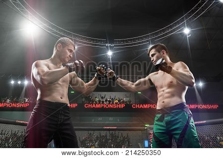 two mma fighters