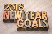 2018 New Year goals  word abstract in vintage letterpress wood type poster