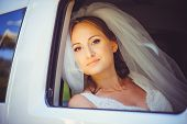 Tender Happy Bride In The Car, Happy Woman In A Wedding Dress Looking Out The Window, White Veil On poster