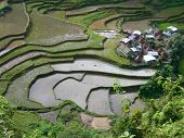 stock photo of ifugao  - Ifugao willage Banawe Philippines surrounded by the rice teraces - JPG