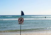 picture of obey  - A Surf sign informing all surfers to surf to the right of the sign and one lone surfer not obeying the rules - JPG