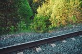 Railroad Along Trees. Railway On Green Vegetation Background With Copy Space. Scenic Backdrop With R poster