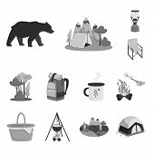 Isolated Object Of Recreation And Tourism Logo. Set Of Recreation And Wildlife Stock Symbol For Web. poster