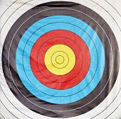 Bulls Eye Archery Target