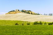 stock photo of senesi  - Typical landscape in Val d - JPG