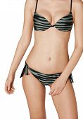 Swimsuit Striped Green With Black Tigress Outdoor Sex poster