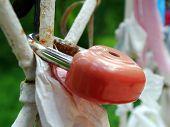 Heart Lock Is The Symbol Of Eternal Love