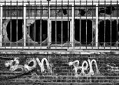 Bar Grafitti