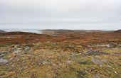 Coastal Scottish Landscape