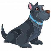 Scottish Terrier Cartoon Pet  Puppy Animals  Cartoon poster
