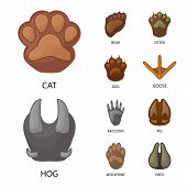 Vector Illustration Of Animal And Print Icon. Collection Of Animal And Footprint Stock Symbol For We poster