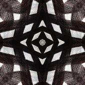 Seamless Symmetrical Pattern Abstract Animal Hair Texture poster