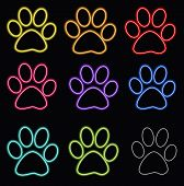 Colored paw print