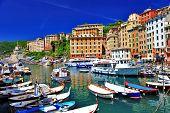 colorful Camogli, Ligurian coast, Italy