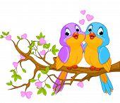 Dois pombinhos sentado sobre a flor de um galho de árvore.
