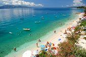 dalmatian beach