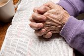Elderly Praying Hands on Bible