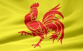 Vlag van de Franse Gemeenschap - België