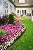 Colorido jardín de flores