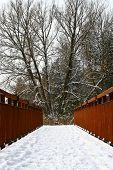 Snowy Bridge Forward