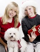 Christmas Twins