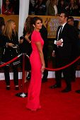 LOS ANGELES - JAN 27:  Nina Dobrev arrives at the 2013 Screen Actor's Guild Awards at the Shrine Aud