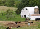 Wisconsin Farming