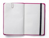 Blank Page Of Pink Note Book With Paper Clip And Elastic Strap Isolated On White