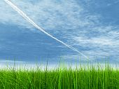 3d green grass over a blue sky with white clouds and an airplane trail or trace as background and a