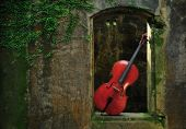Monuments Mottled Window And Cello