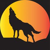 stock photo of wolf moon  - A Wolf in Silhouette howling at a full moon suitable for Halloween Art - JPG