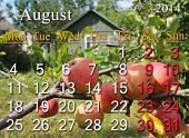 calendar for the August of 2014 year with image of apples