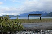 Bench over looking the lake