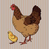 Realistic broody chicken and baby chick side view