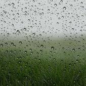 Misty green grass fields view behind wet glass