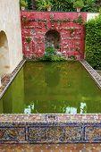 Green Pool Reflection Mosaic Wall Garden Alcazar Royal Palace Seville Spain