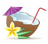 Cocktail Of Coconut Vector Illustration