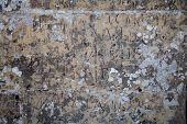 Ancient Stone Slab