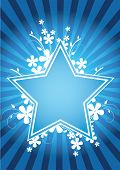 Flower star design with fowers and rays