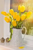 Bright yellow tulips in antique jug sitting in window